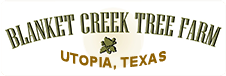 Blanket Creek Tree Farm in Utopia, Texas 78884